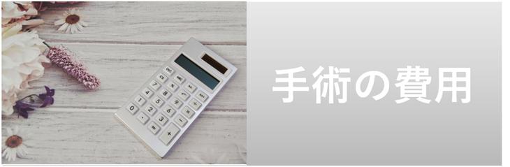 bnr-icl01